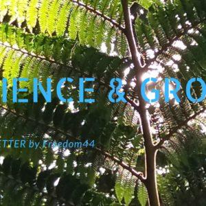 Resilence & Growth