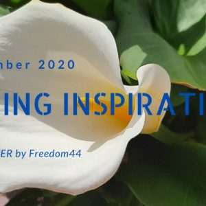 Spring Inspiration...